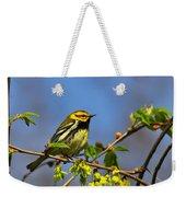 Black-throated Green Warbler Weekender Tote Bag