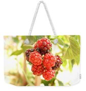 Blackberries Ripening Weekender Tote Bag