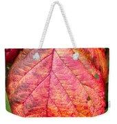 Blackberry Leaf In The Fall 3 Weekender Tote Bag