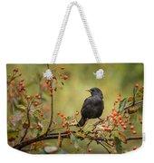 Blackbird On Branch Weekender Tote Bag