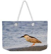 Blackcrowned Night Heron Weekender Tote Bag