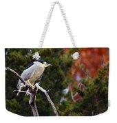 Blacked-capped Night Heron #3 Weekender Tote Bag