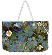 White Wooly Daisies On Borrego Palm Canyon Trail In Anza-borrego Desert State Park-ca Weekender Tote Bag