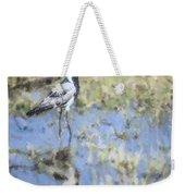 Blacksmith Lapwing Or Plover Vanellus Armatus Weekender Tote Bag