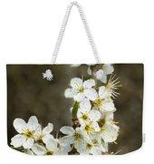 Blackthorn Or Sloe Blossom  Prunus Spinosa Weekender Tote Bag