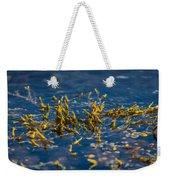 Bladder Seaweed, Fucus Vesiculosus Weekender Tote Bag
