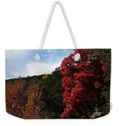 Blazing Maple Tree Weekender Tote Bag