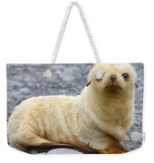 Blondie Weekender Tote Bag by Tony Beck