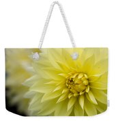 Blooming Yellow Petals Weekender Tote Bag
