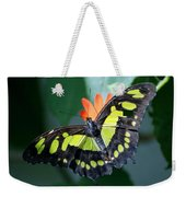 Blooms And Butterfly5c Weekender Tote Bag