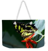 Blooms And Butterfly7c Weekender Tote Bag