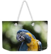 Blue And Gold Macaw V5 Weekender Tote Bag