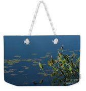 Blue And Green Weekender Tote Bag