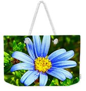 Blue Aster In Park Sierra Near Coarsegold-california   Weekender Tote Bag