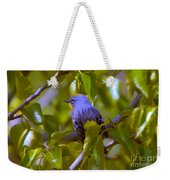 Blue Bird With A Yellow Throat Weekender Tote Bag