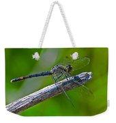 Blue Dragonfly 5 Weekender Tote Bag