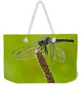 Blue Dragonfly 6 Weekender Tote Bag