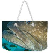 Blue-eyed Grouper Fish Weekender Tote Bag