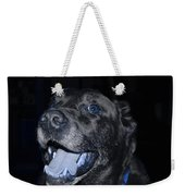 Blue Eyed Lab Smiling For The Camera Weekender Tote Bag