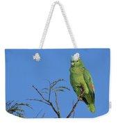 Blue-fronted Parrot Emas National Park Weekender Tote Bag