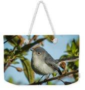 Blue-gray Gnatcatcher Weekender Tote Bag