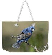 Blue Grosbeak Weekender Tote Bag