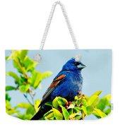 Blue Grosbeak On The Look Out Weekender Tote Bag