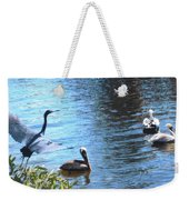 Blue Heron And Pelicans Weekender Tote Bag