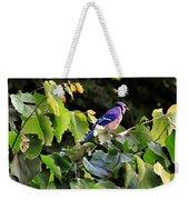 Blue Jay In A Tree Weekender Tote Bag
