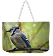 Blue Jay On A Misty Spring Day Weekender Tote Bag