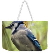 Blue Jay On A Misty Spring Day - Square Format Weekender Tote Bag
