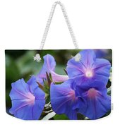 Blue Morning Glory Wildflowers - Convolvulaceae Weekender Tote Bag