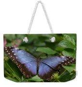 Blue Morpho Butterfly Weekender Tote Bag