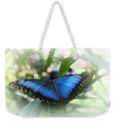 Blue Morpho Butterfly Dsc00575 Weekender Tote Bag