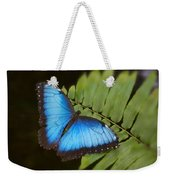 Blue Morpho Butterfly On Fren Dsc00441 Weekender Tote Bag