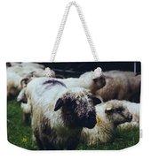 Blue Mountain Sheep Weekender Tote Bag