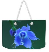 Blue On Green Weekender Tote Bag