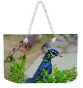 Blue Peacock Green Plants Weekender Tote Bag