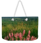 M-05925-blue Pod Lupine And Wallowa Mountain Weekender Tote Bag