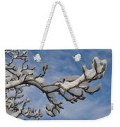 Blue Skies In Winter Weekender Tote Bag