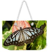 Blue Tiger Butterfly Weekender Tote Bag