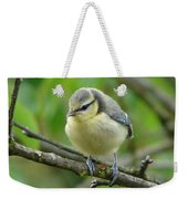 Blue Tit In A Cherry Tree Weekender Tote Bag