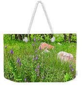 Blue Vervain And Rocks In Pipestone National Monument-minnesota  Weekender Tote Bag