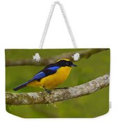 Blue-winged Mountain Tanager Weekender Tote Bag
