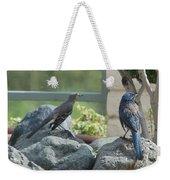 Bluejay And Mockingbird Weekender Tote Bag