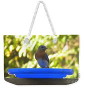 Bluebird Frisbee Weekender Tote Bag
