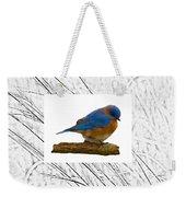 Bluebird In Prairie Frame Weekender Tote Bag