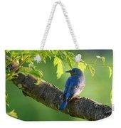 Bluebird In The Morning Weekender Tote Bag
