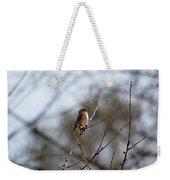 Bluebird In The Sun Weekender Tote Bag