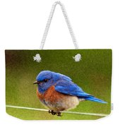 Bluebird  Painting Weekender Tote Bag by Jean Noren